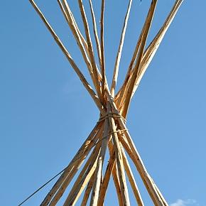 Týpí tyče - InDios historické stany